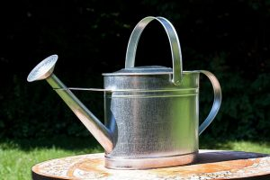 watering-can-397301_640